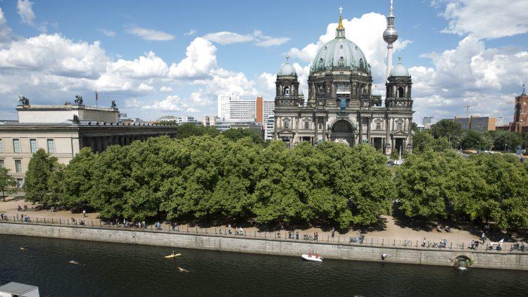 Schwimmer vor dem Berliner Dom beim Flussbad-Pokal