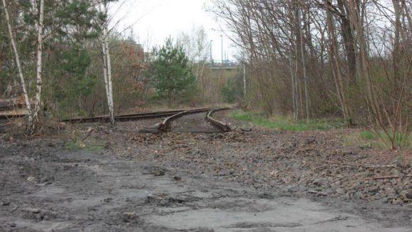 Blick auf alte Gleisanlagen.