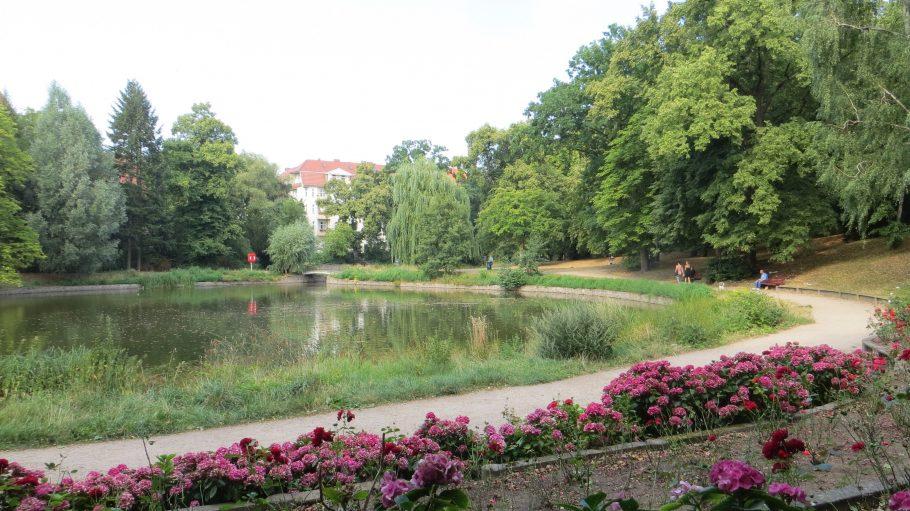 Blick auf den Klarensee im Alten Park Tempelhof.