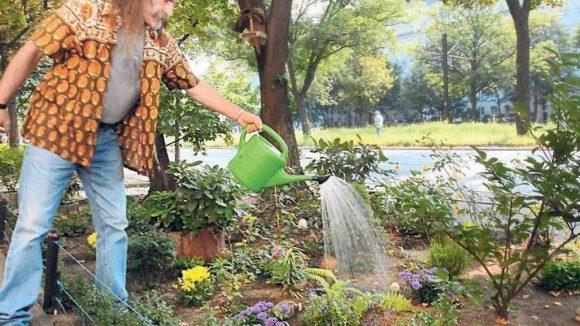 Winfried Lauter kümmert sich täglich um seine Pflanzen - direkt neben der vierspurigen Seestraße.