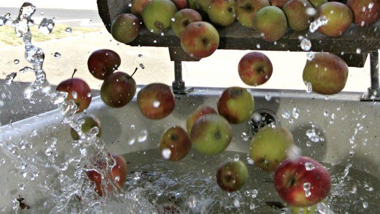 Nur Äpfel und Wasser: Mehr braucht der Saft nicht.