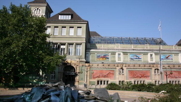 Einzigartige Tierwelt: Das Zoo Aquarium Berlin