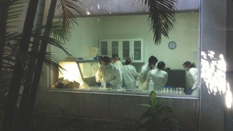 Die Ausstellung zeigt, wie komplex die Wissenschaft der Forensik eigentlich ist.