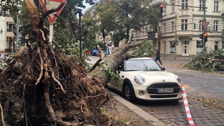 Von wegen Ruhe nach dem Sturm – es gibt einiges aufzuräumen in Berlin.