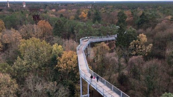 Der Baumkronenpfad bietet spektakuläre Aussichten, gerade auf die Beelitzer Heilstätten.