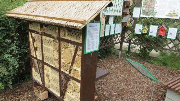 Im Lehrgarten findet man unter anderem ein Insektenhotel und viele Informationen rund um brütende Lebewesen.
