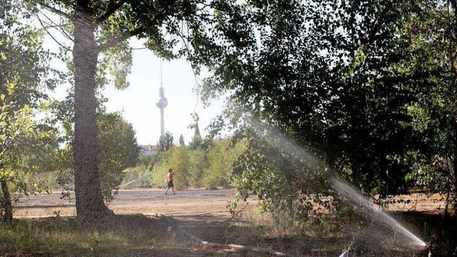Blick auf einen Teil der neuen Erweiterungsfläche des Mauerparks in Berlin.