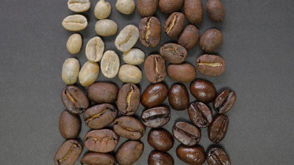 Der Vollautomat von Bonaverde röstet für jeden Kaffee die grünen Bohnen frisch, mahlt und brüht sie auf.