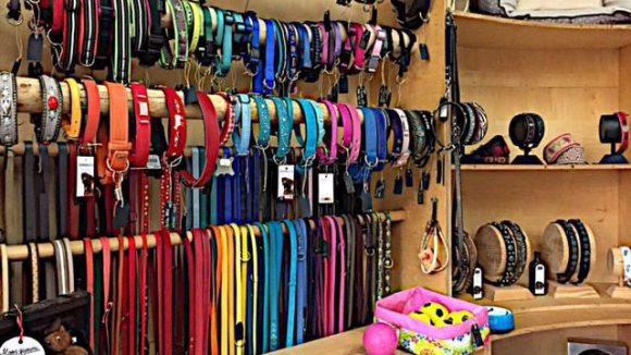 Schicke Hundehalsbänder gibt es im Casa Canini zuhauf.