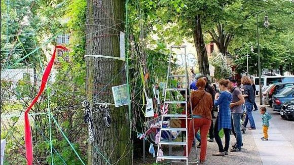 Bisher hatten engagierte Anwohner die Fällung der Linden in der Crellestraße verhindern können.