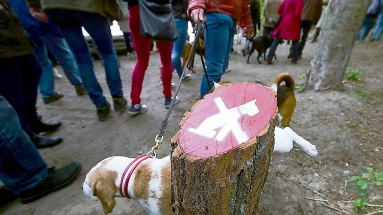 Nicht überzeugend - weder für Hund noch Herrchen: Das Hundeverbot am Schlachtensee.