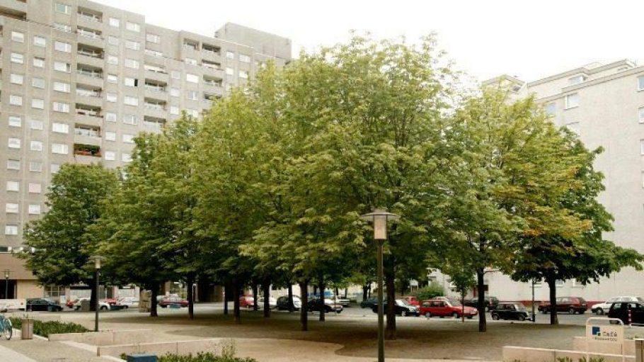 So sah der Kastanienplatz in Kreuzberg vorher aus.