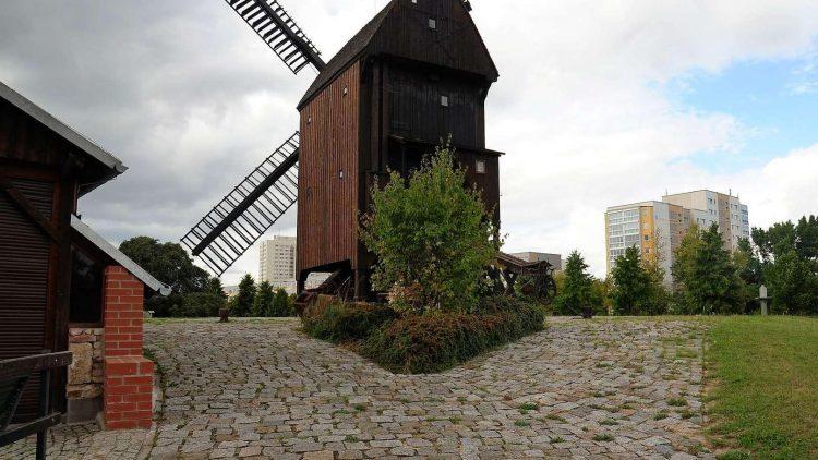 Die Marzahner Mühle. Hier wird noch Korn gemahlen.