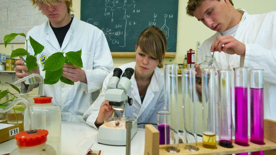 Förderung von Talent und Forschergeist im Schülerforschungszentrum Berlin.