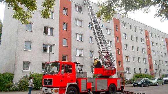 Ungewöhnlicher Einsatz: Hier rettet die Feuerwehr in Karlshorst mehr als hundert eingeschlossene Jung-Sperlinge und brütende Mauersegler.