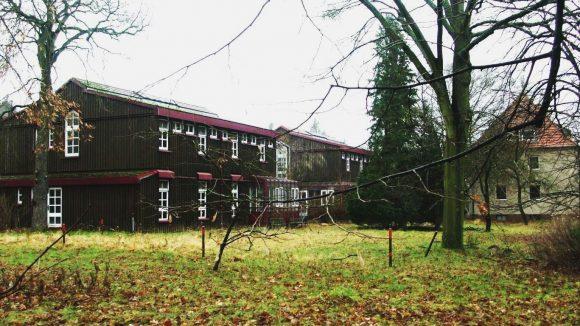 Viel Holz, viel grün: Finnenhaussiedlung in Kladow