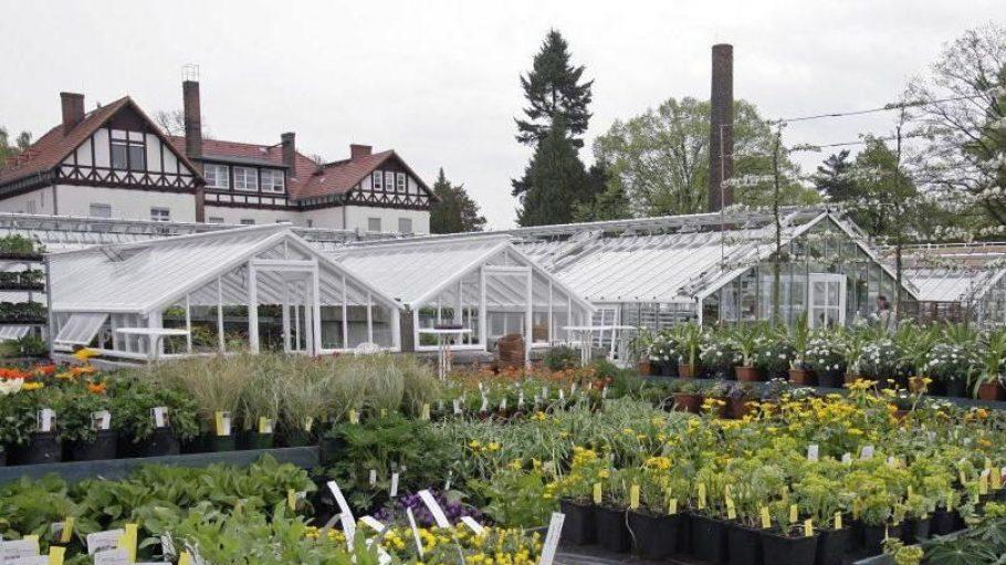 Die Gewächshäuser der ehemaligen Königlichen Gartenakademie wurden originalgetreu restauriert und sind heute ein Paradies für jeden Pflanzenfreund.