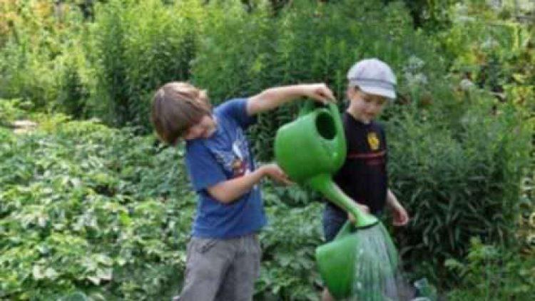 Gartenarbeitsschule Ilse Demme