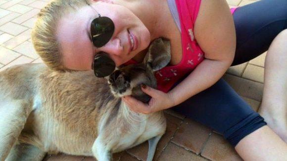 Wow-Moment: Kuscheln mit einem Känguru.