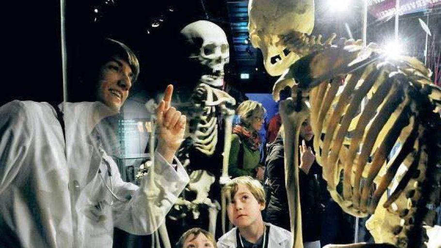 Gespannt am Skelett. Der angehende Mediziner Daniel Wobetzky erklärt, warum sich die Wirbelsäule bei der Erkrankung Morbus Bechterew verkrümmt.