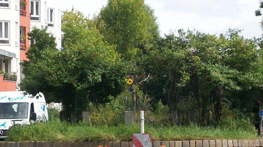Der Blick von der Kreuzung Gleimstraße / Graunstraße.