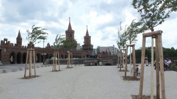 Der Stadtplatz mit seinen neu gepflanzten Kirschbäumen, die den Weg zur Ufertreppe weisen, die wiederum direkt hinunter an die Spree führt.