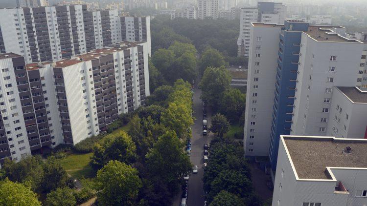 Aus der Schlucht zwischen den Wolkenkratzern blitzt es grün hervor: Die Gropiusstadt hat durchaus ihre attraktiven Seiten.