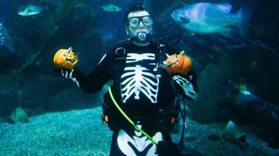 In der Stadt - sogar unter Wasser - sind unheimliche Kreaturen unterwegs: Es ist Halloween in Berlin!