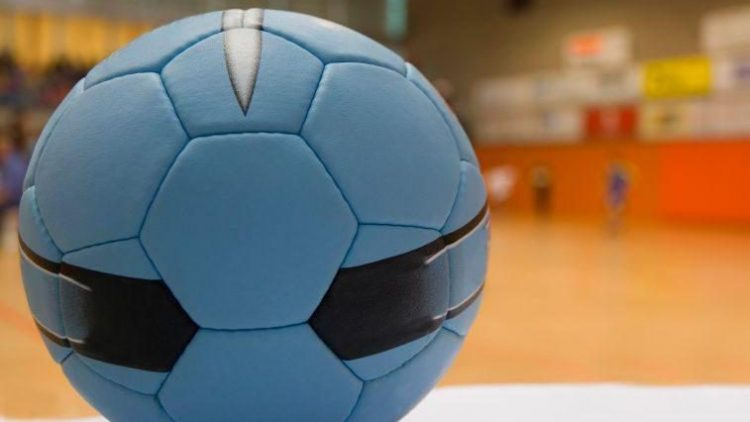 Handball gehört zu den wichtigsten Sportarten beim TSV Marienfelde.