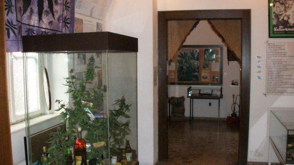 Einer der Ausstellungsräume im Hanfmuseum.