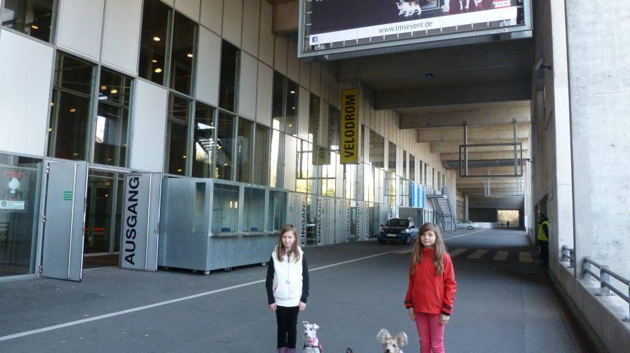 Regeln für den Umgang zwischen Kind und Hund - nur ein Schwerpunkt im Programm der diesjährigen Heimtiermesse Berlin.