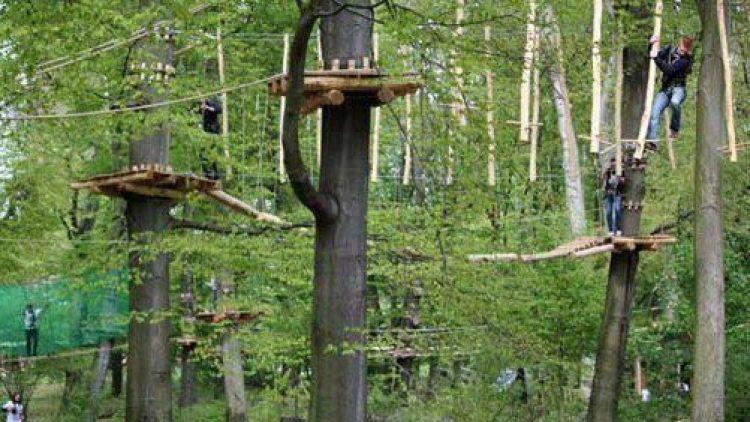 Im Hochseilgarten Jungfernheide startet am Freitag ein 24-Stunden-Klettern.