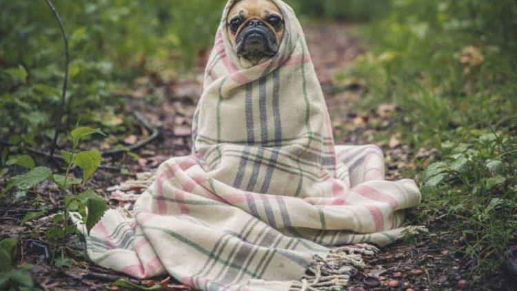 Mit der richtigen Ausrüstung ist auch schmuddeliges Herbst- und Winterwetter kein Problem!