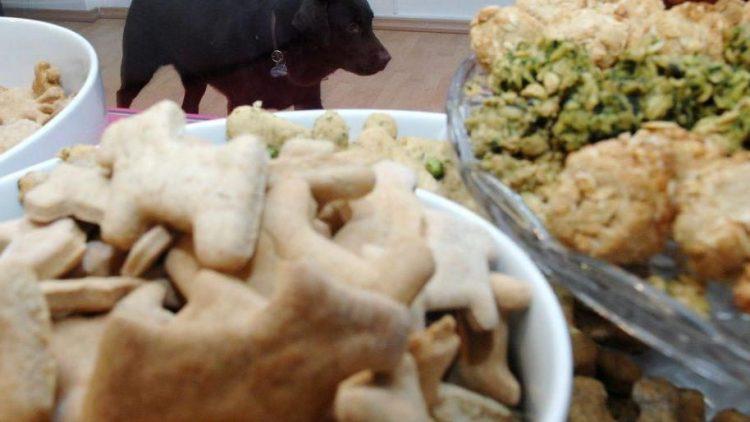Auch Hunde mögen selbstgebackene Plätzchen.
