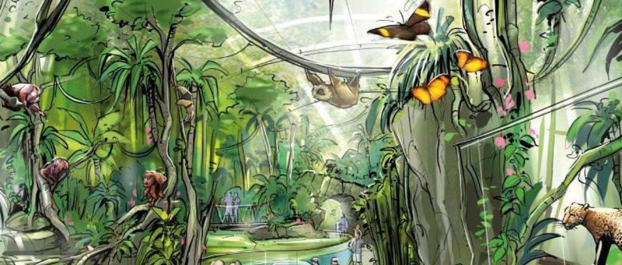 Wie ein Spaziergang durch den Dschungel: Im Amazonashaus des Tierparks sollen bald Jaguare, Kakadus, Faultiere und Seekühe zusammenleben. So wie in ihrer Heimat Südamerika.