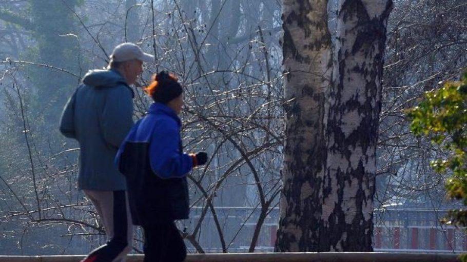 Jogger im frühlingshaften Tiergarten