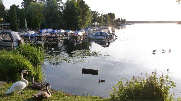 Erkner liegt idyllisch am Wasser, die Spree, die Löcknitz und der Dämmeritzsee sorgen für viel Wasserspaß.