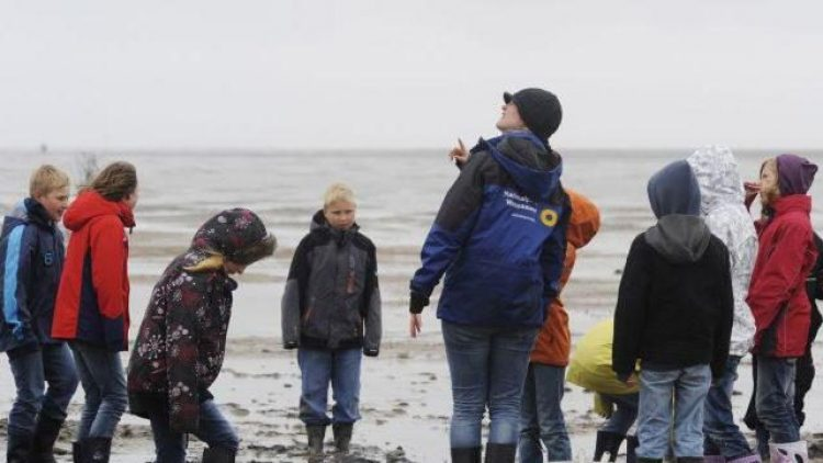 Mal etwas anderes sehen: Kinder bei einer Führung durchs Wattenmeer an der Nordsee.
