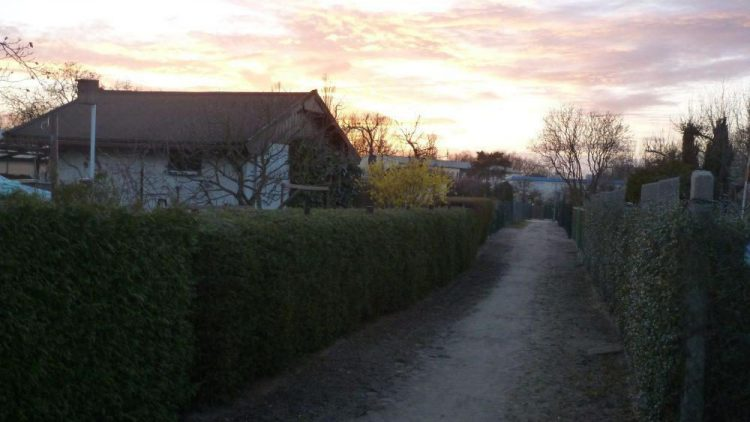 """So romantisch kann Kleingarten sein. Die Parzellen in der Anlage """"Zur Linde"""" haben für ihre Besitzer einen großen sozialen und emotionalen Wert."""