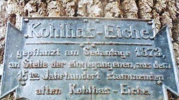 Gedenktafel an der Kohlhas-Eiche in Nikolassee.