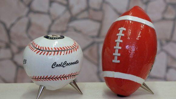 Bei diesen Kokosnuss-Wohnaccessoires schlagen Baseball-Fan-Herzen höher.