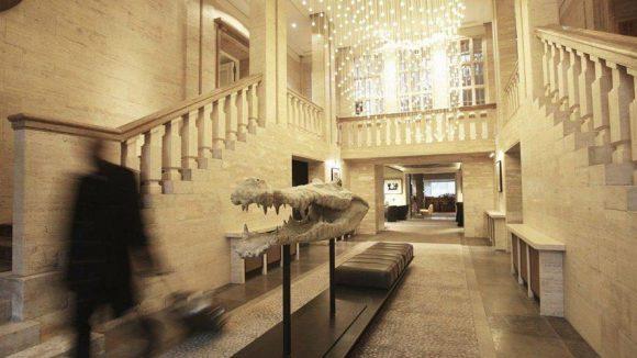 Willkommen im prachtvollen Entrée des Hotels: Herrschaftliche Treppenaufgänge zu beiden Seiten, modernes Interieur und ein direkter Blick auf das Afrika Gehege des Zoos.