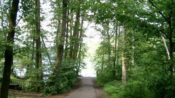Erholung pur! Im Wald rund um die Krumme Lanke kann man die Seele baumeln lassen.