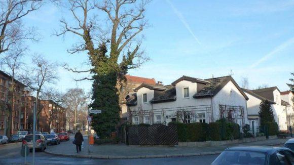 Neben lang gestreckten Siedlungsbauten gibt es im Lettekiez auch noch einige frei stehende, kleinere Häuser.