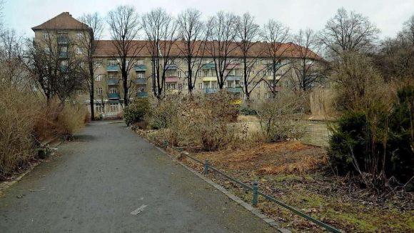 Die Sicht auf den Louise-Schroeder-Platz in Wedding wird von ungepflegtem Grün verdeckt.