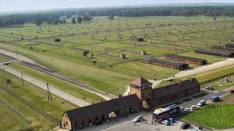 Das Konzentrationslager Birkenau. Von hier stammen die Birken, die der Łukasz Surowiec für die Biennale auch schon 2012 in Lichtenberg einpflanzte.