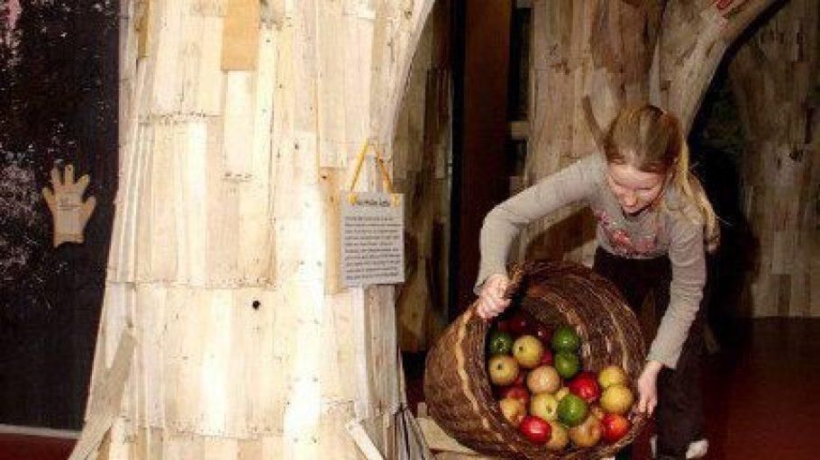 Im MACHmit! Museum werden Kinder zu Apfelexperten.