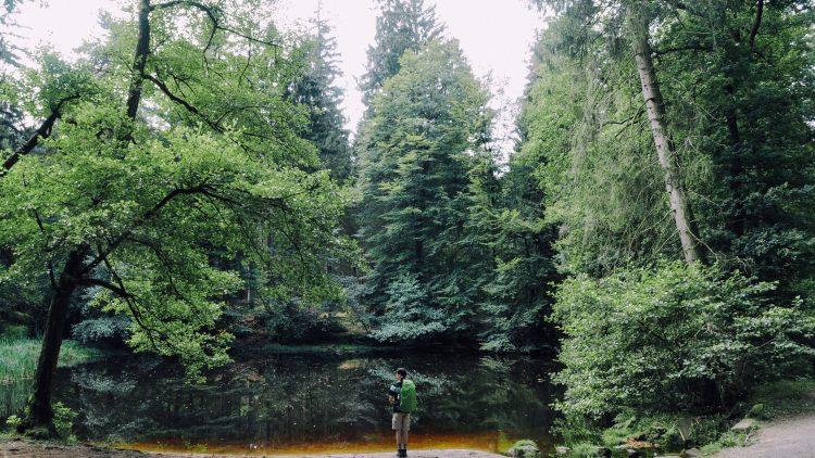 Schlösser, Seen, Wälder – diese Blogs und Instagram-Accounts zeigen dir, was es in Brandenburg alles zu sehen gibt.