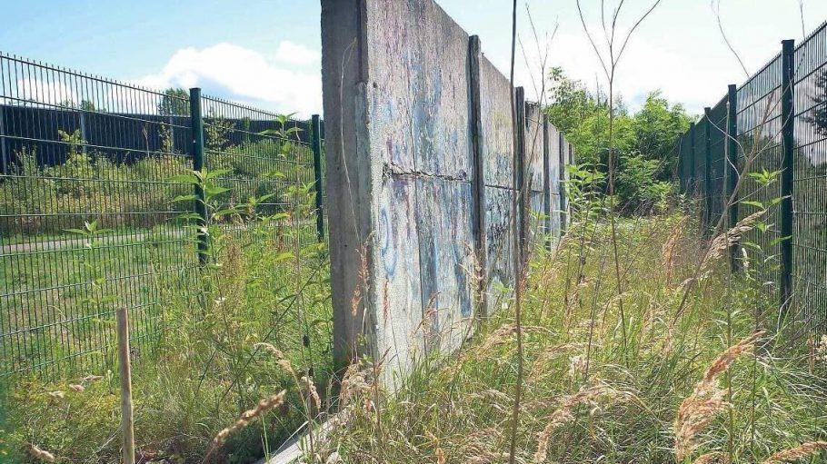 """Hier bröselt ein vormals gefährliches Ungeheuer hinter Gittern vor sich hin: Mauerelemente der """"Hinterlandsicherung"""" und wuchernde Vegetation im Landschaftspark Rudow-Altglienicke."""