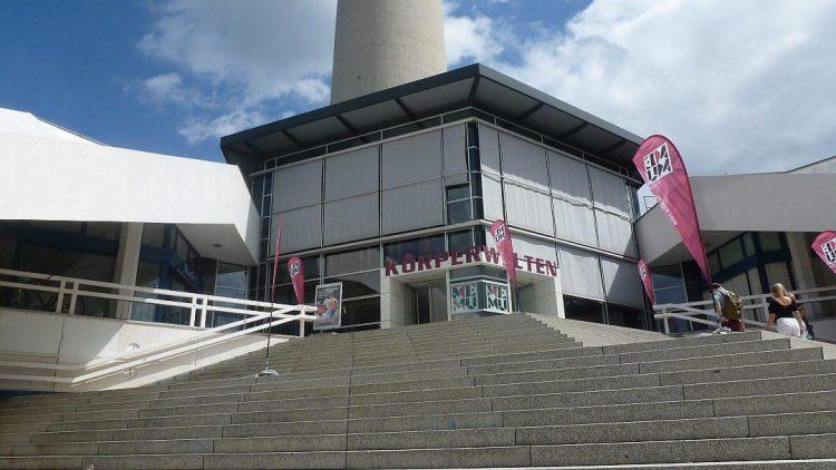 Das Menschenmuseum befindet sich vom Bahnhof Alexanderplatz aus gesehen auf der Rückseite des Fernsehturms, in Sichtweite von Marienkirche und Neptunbrunnen.